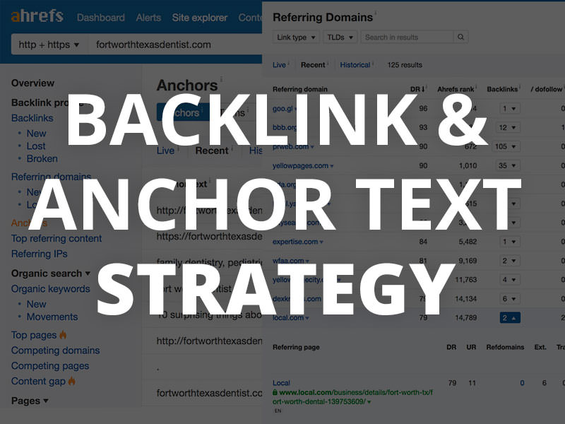 Backlink & Anchor Text Strategy